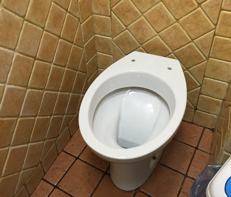 Womens Public Bathroom Toilet Video: Bathroom Basics For Travel In Italy